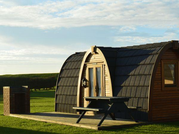Our camping pods provide a great alternative to tents